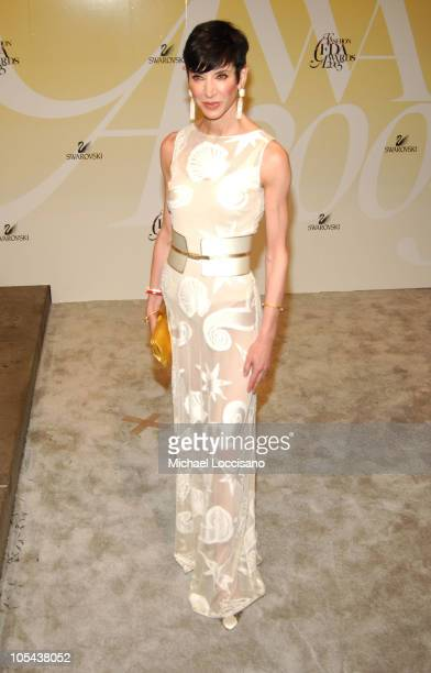 Amy Fine Collins during 2005 CFDA Fashion Awards Arrivals at The New York Public Library in New York City New York United States