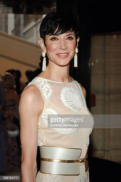 Amy Fine Collins during 2005 CFDA Fashion Awards Inside Arrivals at New York Public Library in New York City New York United States