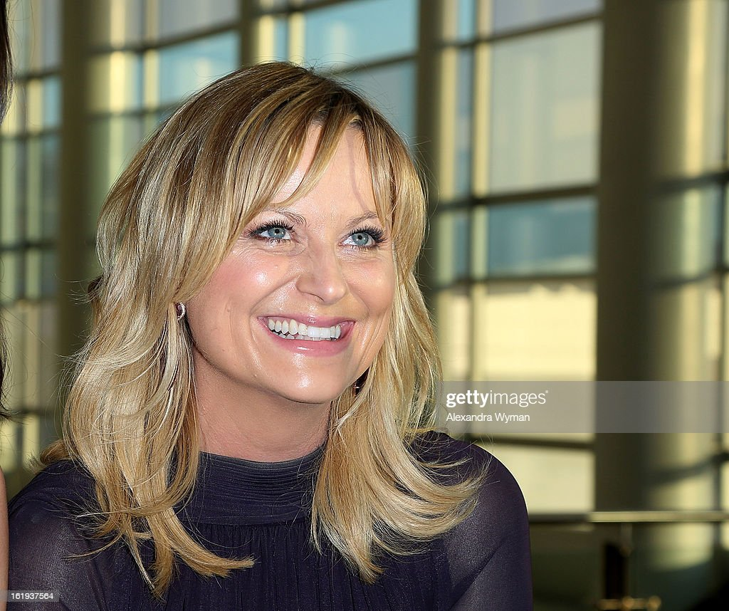 Amy Poehler at The 2013 Writers Guild Awards Arrivals held at The JW Marriott Los Angeles at L.A. LIVE on February 17, 2013 in Los Angeles, California.
