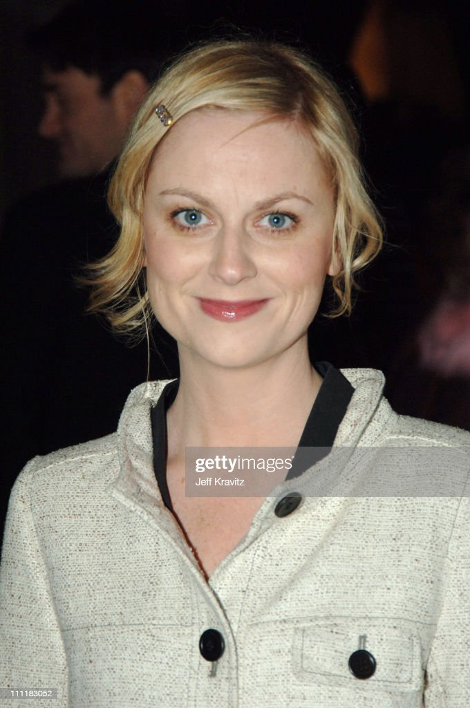 Amy Poehler of 'Saturday Night Live' during 20th Annual Rock and Roll Hall of Fame Induction Ceremony - Red Carpet at Waldorf Astoria Hotel in New York City, New York, United States.
