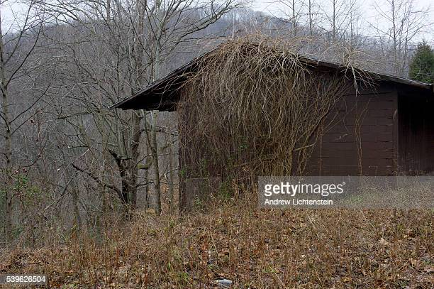 An abandoned building in Naoma Many residents of the area believe there is a deliberate plan by the minning companies to depopulate the valley so...