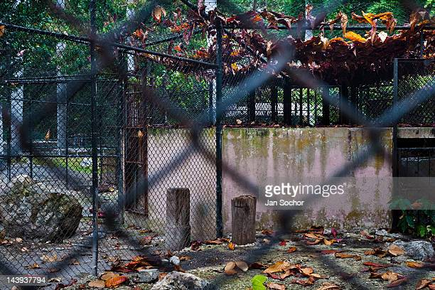 An abandoned concrete cage at the Havana Zoo on February 12 2011 in Havana Cuba The largest and the oldest zoo in Cuba is located in a centric...