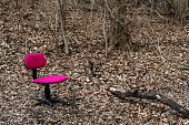 A pink office chair sits in the woods in Southwoods Park, West Des Moines, Iowa.