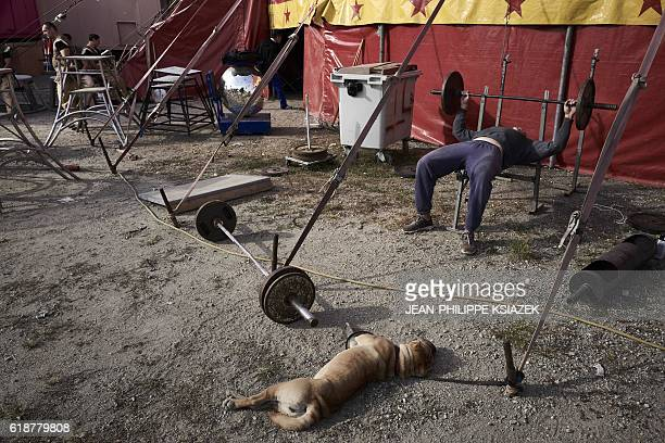 An acrobat lifts weight as he trains outside the circus tent of the Medrano Circus in Lyon on October 12 2016 Created in 1897 by Spanish clown...