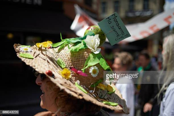 An activist against GMO wears a decorated hat with a little placard reading 'Monsanto My health ' for the International March against Monsanto which...