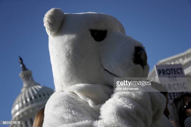 An activist dressed as a polar bear attends a news conference on Republican sponsored legislation that would open the Alaskan wilderness to oil...