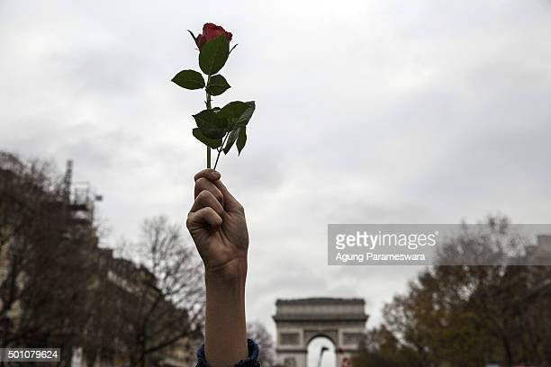 An Activist holds up a rose flower during a demonstration at the Avenue de la Grande Armee boulevard on December 12 2015 in Paris France The final...