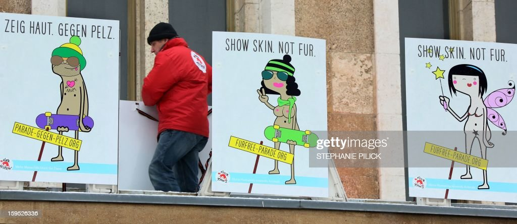 An activist of animal welfare organisation 'Four Paws' (Vier Pfoten) arranges placards reading 'Show skin. Not fur' at the former airport Tempelhof in Berlin, on January 13, 2013. The Fashion fair 'Bread and Butter' is located in the former airport and takes part from January 15 to 17, 2013.