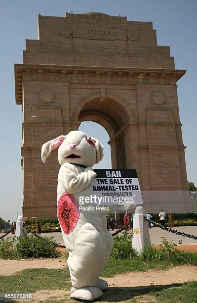 An activist of People for the Ethical Treatment of Animals dressed as wounded rabbit during a protest against animal testing for Cosmetics at the...