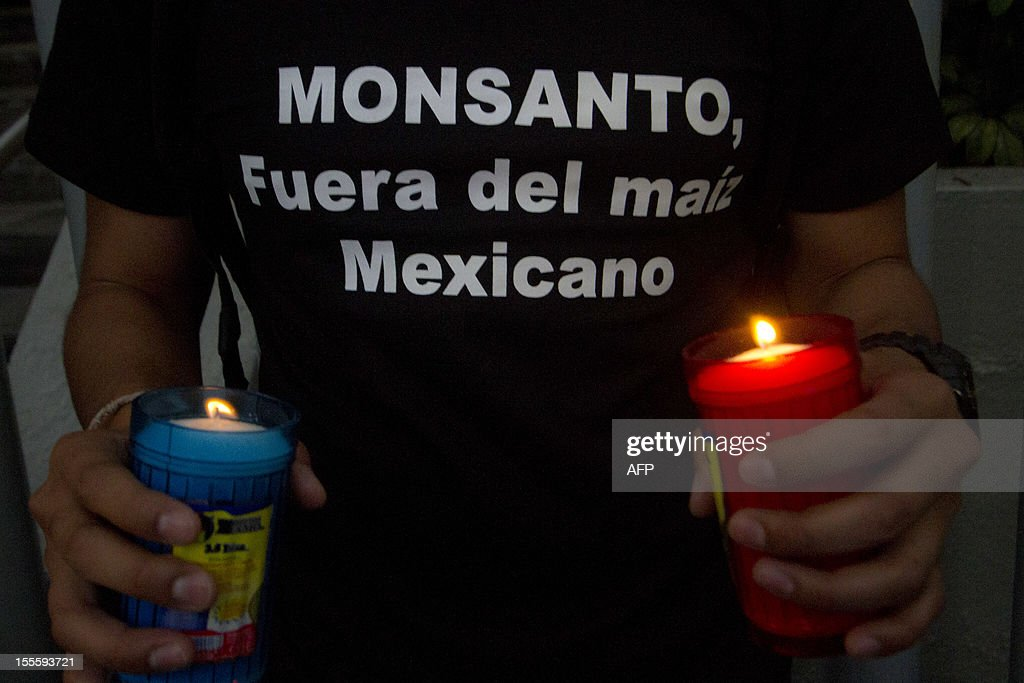 An activist of the global environmental watchdog Greenpeace demonstrates against US biotech giant Monsanto and the commercial sowing of transgenic corn, at the entrance of the Economy Ministry in Mexico City, on November 5, 2012. AFP PHOTO/ Pedro Pardo