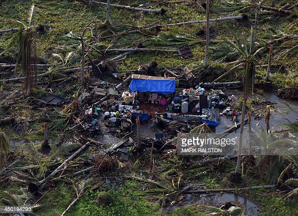 An aerial photo shows temporary housing amongst uprooted palm trees near Tacloban on November 17 2013 Grieving survivors of a monster typhoon in the...