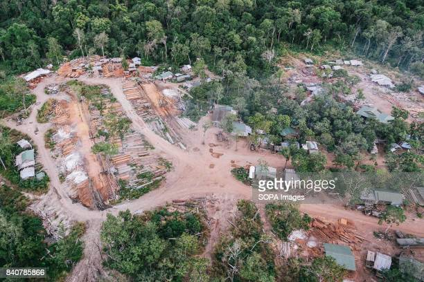 An aerial view of a logging camp near the Lower Sesan II Dam The clearing for the dam's reservoir began in March 2013 by Cambodia's Ang Associates...