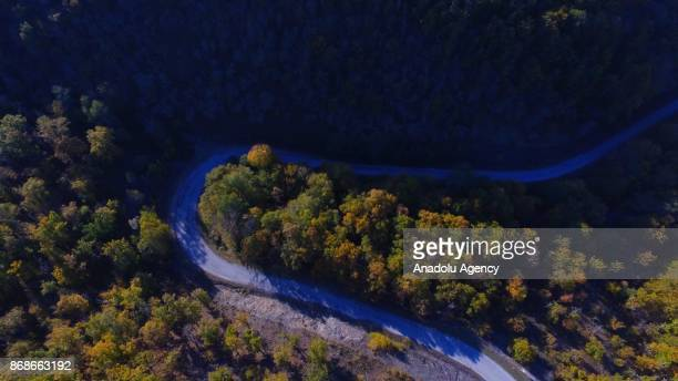 An aerial view of Igneada Floodplain Forests among greenish and yellowish trees during autumn season in Kirklareli Turkey on October 31 2017 The...