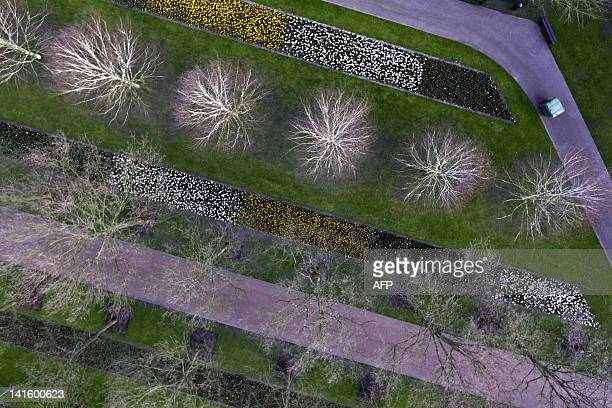An aerial view of the Keukenhof flower garden near Lisse on March 19 taken with the remotecontrolled helicopter Octocopter The flower garden opens...