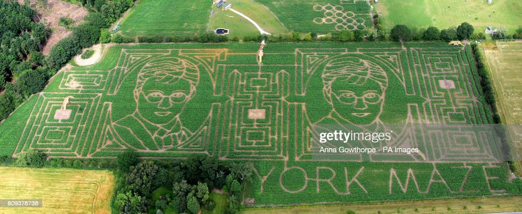 york maze. an aerial view of york maze, the largest maize maze in europe. this year\u0027s