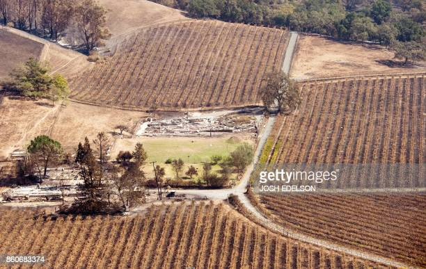 An aerial view shows a burned property surrounded by charred vineyards in Santa Rosa California on October 12 2017 Hundreds of people are still...