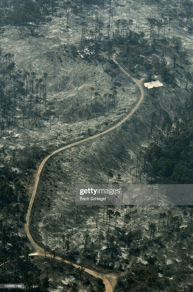 An aerial view shows a burned ridge line September 7, 2011 east of Bastrop, Texas. Several large wildfires have been devastating Bastrop County for the last three days, but are now 30 percent contained, according to the Texas Forest Service.