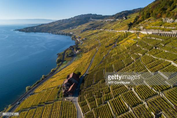 TOPSHOT An aerial view shows the UNESCO World Heritage Site of Lavaux with its terraced vineyards above Lake Geneva on October 11 2017 near Chexbres...