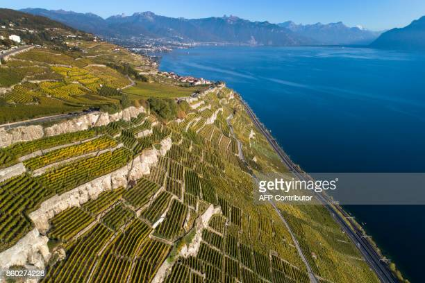 An aerial view shows the UNESCO World Heritage Site of Lavaux with its terraced vineyards above Lake Geneva on October 11 2017 near Chexbres western...