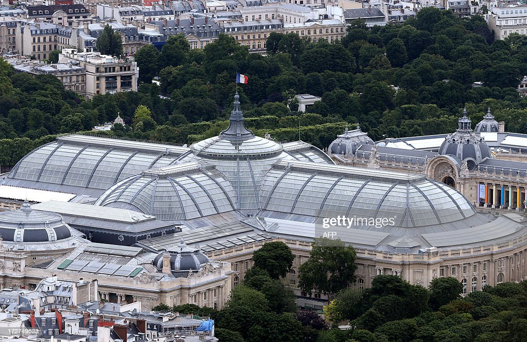 An aerial view taken on July 4, 2013 shows the Grand Palais museum in Paris.