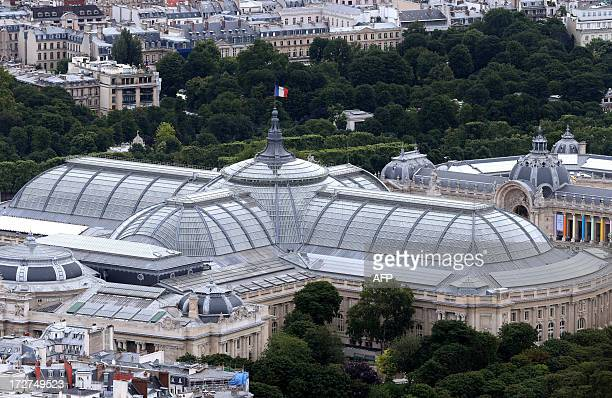 An aerial view taken on July 4 2013 shows the Grand Palais museum in Paris AFP PHOTO / THOMAS SAMSON