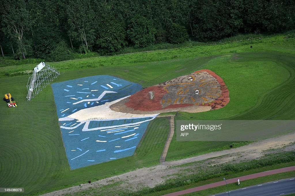 An aerial view taken on May 30, 2012 show a reproduction of the self-portrait of Duch painter Vincent van Gogh, made with wood chips and plants, in a field in Nuenen. The work measures 68 by 81 meters and lies at the foot of the Roosdonck windmill that Van Gogh also painted. AFP PHOTO / ANP / ROBERT VAN DEN BERGE - netherlands out -