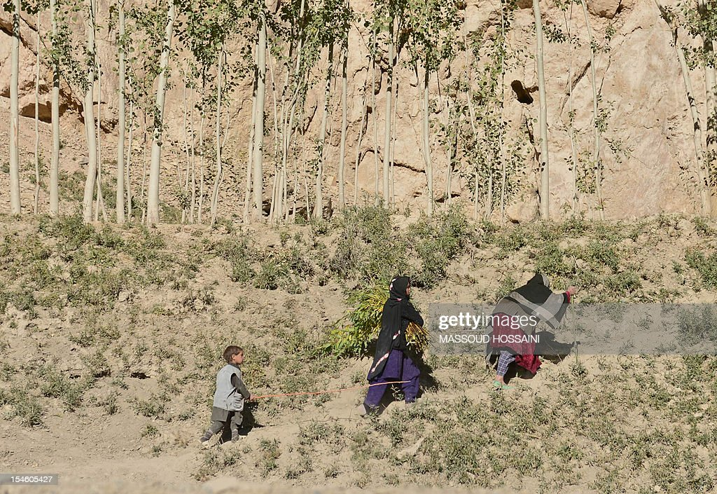 An Afghan ethnic Hazara woman and children walk up a hill in the outskirts of Bamiyan on October 23, 2012. Bamiyan, some 200 kilometres (124 miles) northwest of Kabul, stands in a deep green and lush valley stretching 100 kilometres through central Afghanistan, on the former Silk Road that once linked China with Central Asia and beyond. The town was home to two nearly 2,000-year-old Buddha statues before they were destroyed by the Taliban, months before their regime was toppled in a US-led invasion in late 2001. AFP PHOTO / Massoud HOSSAINI