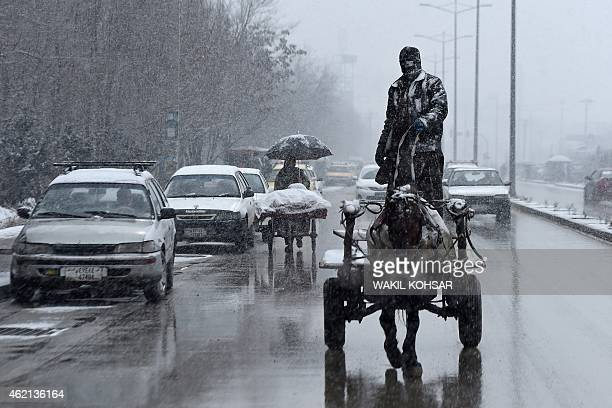 An Afghan man rides his horse cart along the street as snow falls in Kabul on January 25 2015 The Afghan capital witnessed its first snowfall of the...
