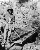 An AfricanAmerican miner poses with a shovel in Auburn Ravine during the Gold Rush California 1852