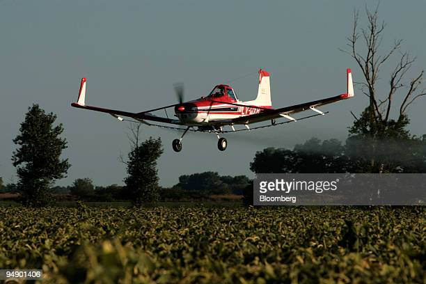 An airplane sprays glyphosate herbicide over a sunflower plantation near Ines Indart Argentina on Monday Feb 11 2008 Argentina is the second largest...