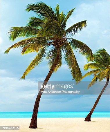 An amazing beach.
