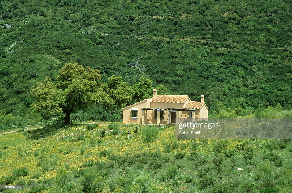 An Andalucian country house