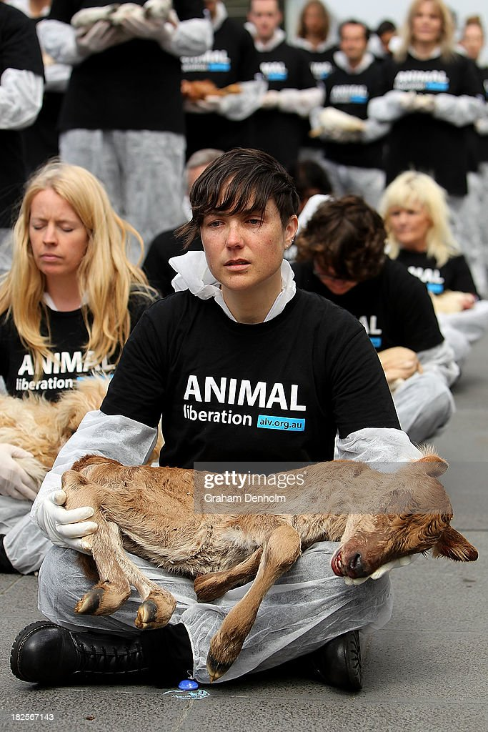 An Animal Liberation Victoria activist cries as she holds a dead animal at Federation Square on October 1, 2013 in Melbourne, Australia. Over 200 activists gathered with the bodies of deceased animals to publicly grieve their deaths. Animal Liberation Victoria is against the treatment of animals as 'property' an promotes a vegan lifestyle.