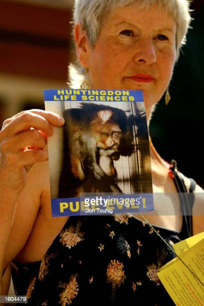 An animal rights protester carries a flyer during a protest against experimentation on animals at Huntingdon Life Sciences July 26 2001 at the...
