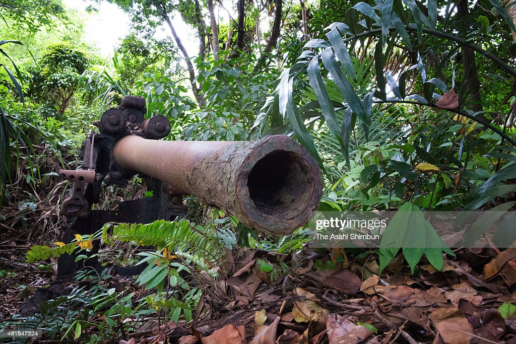 An antiaircraft artillery piece of the former Japanese forces remains on Hahajima Island on June 16 2015 in Ogasawara Tokyo Japan Along with the...