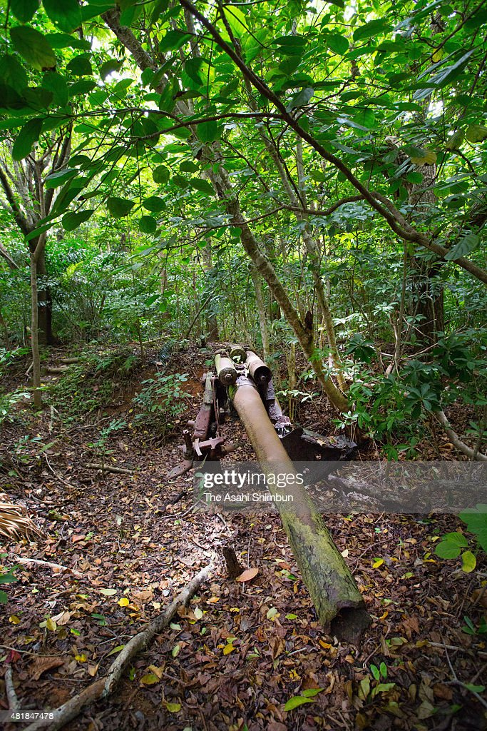 An antiaircraft artillery piece of the former Japanese forces remains on Hahajima Island on June 18 2015 in Ogasawara Tokyo Japan Along with the...