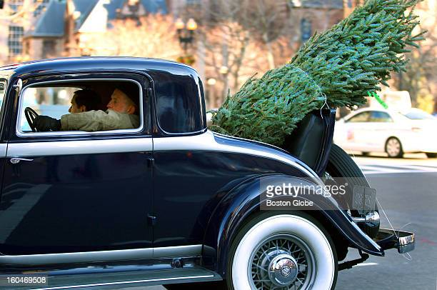 An antique automobile makes good use of the jump seat as it carries a fresh cut Christmas tree down Dartmouth Street in the Back Bay