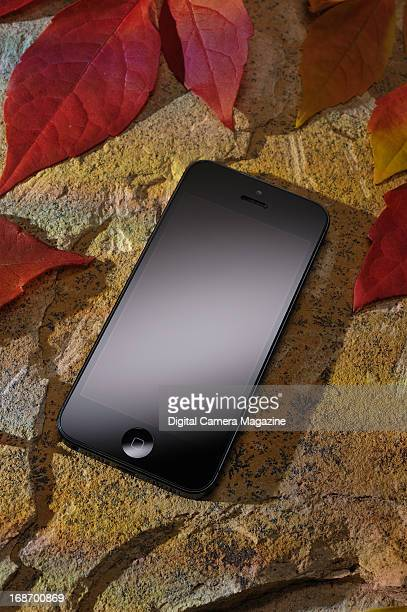 An Apple iPhone 5 photographed on slate and surrounded by red Acer leaves taken on October 15 2012