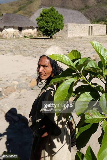 An Arhuaco man stands by a tree inside the walled village also known as pueblito on January 24 2015 in Nabusimake Colombia The Sierra Nevada hills...