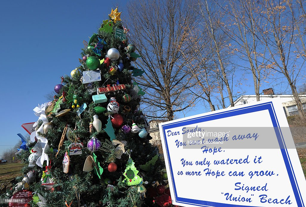 An artificial Christmas tree, known as the 'Tree of Hope,' stands in an empty grass lot on December 14, 2012 in Union Beach, New Jersey. The tree, rescued from a pile of trash and wreckage left by Superstorm Sandy and put up by a local resident, has been visited and decorated by people from all over who consider it a symbol of hope.
