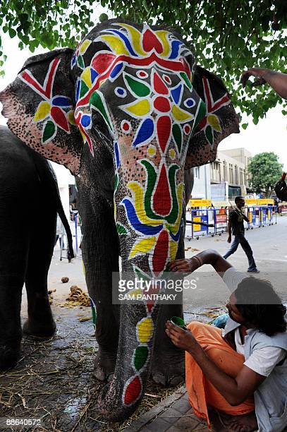 An artist gives the finishing touches to an elephant outside the Lord Jagannath mandir in Ahmedabad on June 23 the eve of the Lord Jagannath Rath...