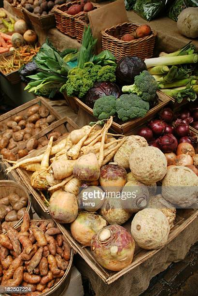 An assortment of different root vegetables