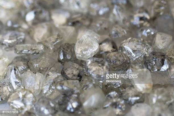 An assortment of rough diamonds sit on a sorting table at the Namibian Diamond Trading Co diamond processing and valuation center a joint venture...