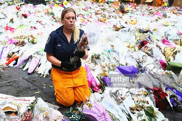 An assortment of volunteers from different agencies clear away flowers at Martin Place on December 23 2014 in Sydney Australia Volunteers have...