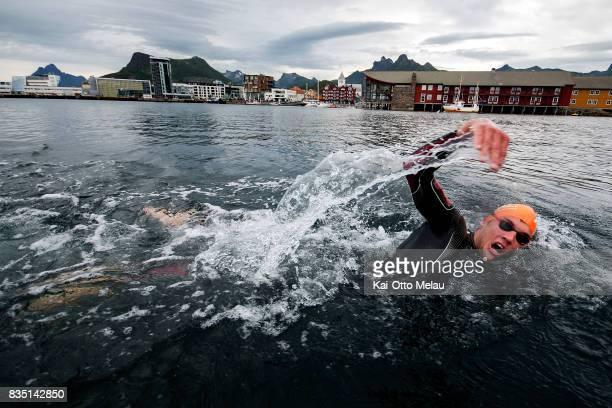 An athlete in the water at The Arctic Triple // Lofoten Triathlon Olympic distance on August 18 2017 in Svolvar Norway Lofoten Triathlon is one of...