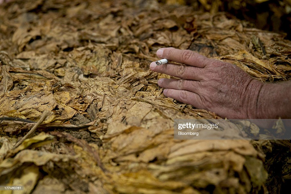 An attendee smokes a cigarette over a bale of tobacco during an auction at the Old Belt Tobacco Sales warehouse in Rural Hall, North Carolina, U.S., on Tuesday, Aug. 20, 2013. President Barack Obama's proposal in April to raise federal excise taxes on cigarettes by about 93%, to $1.95 a pack, is not likely to gain political support, due in part to weak consumer spending amid sluggish wage growth in recent years. Photographer: Andrew Harrer/Bloomberg via Getty Images