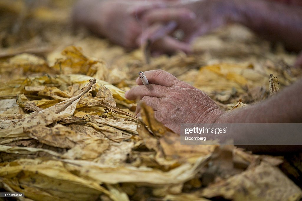 An attendee smokes a cigarette over a bale of tobacco following an auction at the Old Belt Tobacco Sales warehouse in Rural Hall, North Carolina, U.S., on Tuesday, Aug. 20, 2013. President Barack Obama's proposal in April to raise federal excise taxes on cigarettes by about 93%, to $1.95 a pack, is not likely to gain political support, due in part to weak consumer spending amid sluggish wage growth in recent years. Photographer: Andrew Harrer/Bloomberg via Getty Images