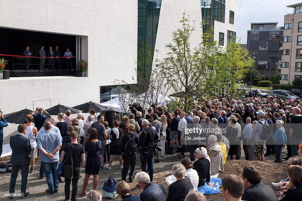 an-attending-crowd-look-on-as-crown-prince-frederik-stands-on-a-as-picture-id599199182