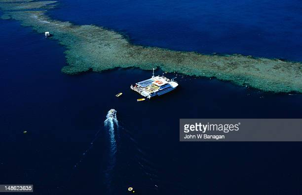 An authorised 'reef boat' cruising around Hamilton Island in the Whitsunday Islands Group.