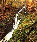 An Autumn view over the cascading waters of Stockghyll Force in the Lake District National Park.